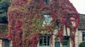 Snap up a 3-course dinner at White Hart in Wytham for £20